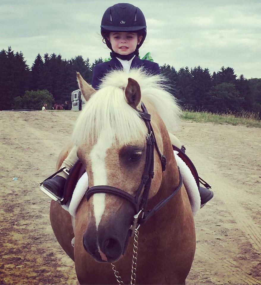 Stonewood Equestrian Riding Academy
